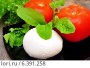 Купить «Ингредиенты для салата Капрезе», фото № 6391258, снято 10 сентября 2014 г. (c) Мастепанов Павел / Фотобанк Лори