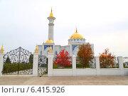 Мечеть. Стоковое фото, фотограф Петр Карташов / Фотобанк Лори