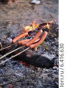 Сосиски на костре в лесу. Стоковое фото, фотограф Наталья Гуреева / Фотобанк Лори