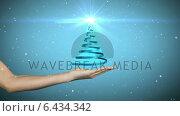 Купить «Hand presenting christmas tree design », видеоролик № 6434342, снято 31 мая 2020 г. (c) Wavebreak Media / Фотобанк Лори