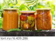 Купить «Три банки с консервированными овощами на фон езелени», фото № 6439286, снято 1 сентября 2014 г. (c) Володина Ольга / Фотобанк Лори