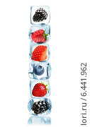 Купить «Ягоды в кубиках льда», фото № 6441962, снято 27 августа 2014 г. (c) Валентина Разумова / Фотобанк Лори