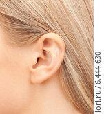 Купить «close up of woman's ear», фото № 6444630, снято 30 октября 2010 г. (c) Syda Productions / Фотобанк Лори