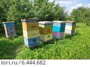 Купить «Разноцветные пчелиные ульи», эксклюзивное фото № 6444682, снято 26 июля 2014 г. (c) Елена Коромыслова / Фотобанк Лори