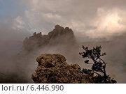Кавказ, Туапсинский район, гора Индюк. Стоковое фото, фотограф Roman.melnikeysk / Фотобанк Лори