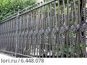 Купить «Ограда Юсуповского садика. Санкт-Петербург», фото № 6448078, снято 26 июля 2013 г. (c) Щелкотунова Любовь / Фотобанк Лори
