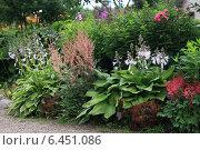 Цветущий сад. Стоковое фото, фотограф Анна Сапрыкина / Фотобанк Лори