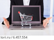 Купить «Businesswoman With Shopping Cart Model And Laptop», фото № 6457554, снято 31 мая 2014 г. (c) Андрей Попов / Фотобанк Лори