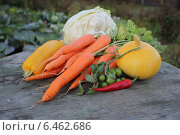 Овощи на деревянном столе. Стоковое фото, фотограф Иван Корчагин / Фотобанк Лори