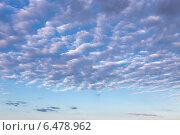 Купить «Легкие перистые облака в синем небе», фото № 6478962, снято 8 сентября 2014 г. (c) Сергей Лаврентьев / Фотобанк Лори