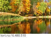 Купить «Осенний пейзаж», фото № 6480510, снято 2 октября 2014 г. (c) Наталья Волкова / Фотобанк Лори
