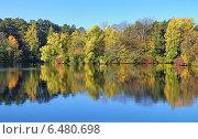 Купить «Осенний пейзаж с деревьями, отражающимися в воде», фото № 6480698, снято 2 октября 2014 г. (c) Михаил Марковский / Фотобанк Лори