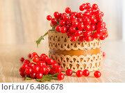 Купить «Красные ягоды калины с листьями в корзине», фото № 6486678, снято 28 сентября 2014 г. (c) Леонид Штандель / Фотобанк Лори