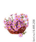 Букет цветов в плетеной корзине. Стоковое фото, фотограф Лариса К / Фотобанк Лори