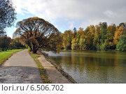 Купить «Декоративные пруды в Измайловском парке осенью», эксклюзивное фото № 6506702, снято 1 октября 2014 г. (c) lana1501 / Фотобанк Лори