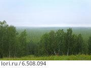 Купить «Западно-Сибирская низменность», эксклюзивное фото № 6508094, снято 24 августа 2014 г. (c) Анатолий Матвейчук / Фотобанк Лори
