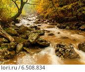 Купить «Осенний пейзаж с рекой в западных украинских Карпатах», фото № 6508834, снято 11 октября 2009 г. (c) Эдуард Кислинский / Фотобанк Лори