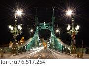 """Ночной Будапешт. Мост Свободы. """"Szabadság híd"""" (2014 год). Стоковое фото, фотограф Сластникова Татьяна / Фотобанк Лори"""