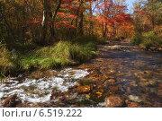 Небольшой горный ручей на фоне осенней тайги. Стоковое фото, фотограф Владимир Серебрянский / Фотобанк Лори