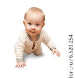 Шести-месячный ребенок, изолировано на белом. Стоковое фото, фотограф Владимир Мельников / Фотобанк Лори