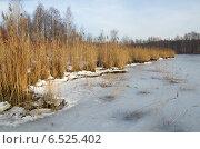 Купить «Лед у берега», эксклюзивное фото № 6525402, снято 27 декабря 2013 г. (c) Елена Коромыслова / Фотобанк Лори