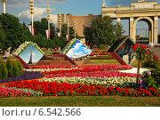 Купить «ВДНХ (ВВЦ) в Москве», эксклюзивное фото № 6542566, снято 7 июля 2009 г. (c) lana1501 / Фотобанк Лори