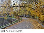 Купить «Прогулочная пешеходная дорожка около Егерского пруда в Москве осенью», эксклюзивное фото № 6544894, снято 14 октября 2014 г. (c) lana1501 / Фотобанк Лори