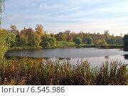 Купить «Свибловские пруды в Москве осенью», эксклюзивное фото № 6545986, снято 11 октября 2014 г. (c) lana1501 / Фотобанк Лори