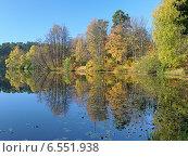 Купить «Осенний пейзаж с деревьями, отражающимися в воде спокойного озера», фото № 6551938, снято 8 октября 2014 г. (c) Михаил Марковский / Фотобанк Лори