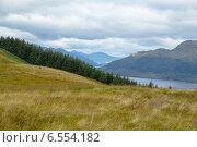 Вид со склона Бейн Дабх (Beinn Dudh)на озеро Лох Ломонд в национальном парке Троссакс (Шотландия). Август. Стоковое фото, фотограф Анатолий Палатов / Фотобанк Лори