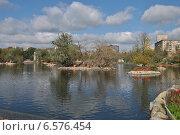 Купить «Большой Пресненский пруд в Московском зоопарке осенью», эксклюзивное фото № 6576454, снято 28 сентября 2014 г. (c) lana1501 / Фотобанк Лори