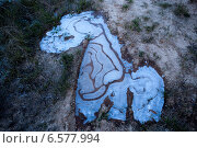 Первые заморозки. Замёрзшая лужа в форме лошадки. Стоковое фото, фотограф Анна Кудрявцева / Фотобанк Лори
