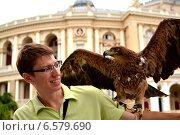 Орел сидит на руке мужчины. Стоковое фото, фотограф Абызова Елена / Фотобанк Лори