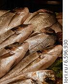 Рыба на прилавке. Стоковое фото, фотограф Короткова Мария / Фотобанк Лори