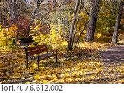 Поэзия осени. Стоковое фото, фотограф Андрей Кудряшов. / Фотобанк Лори