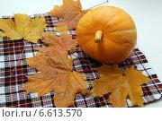Купить «Оранжевая тыква и осенние кленовые листья на клетчатом полотенце», фото № 6613570, снято 30 сентября 2014 г. (c) Олейникова Галина / Фотобанк Лори