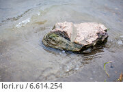 Камень на берегу реки. Стоковое фото, фотограф Давид Арутюнов / Фотобанк Лори