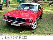Купить «Ford Mustang—культовый автомобиль класса Pony Car. Парад автомобилей в музее-заповеднике «Томская писаница»», фото № 6619322, снято 16 августа 2014 г. (c) александр афанасьев / Фотобанк Лори