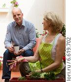 Купить «Elderly couple in patio», фото № 6619702, снято 28 мая 2014 г. (c) Яков Филимонов / Фотобанк Лори