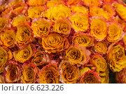 Огромный букет оранжевых роз. Стоковое фото, фотограф Ольга Сейфутдинова / Фотобанк Лори