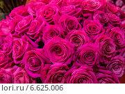 Огромный букет малиновых роз. Стоковое фото, фотограф Ольга Сейфутдинова / Фотобанк Лори