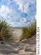 Тропинка к морю в песчаных дюнах (2014 год). Стоковое фото, фотограф Катерина Вахе / Фотобанк Лори