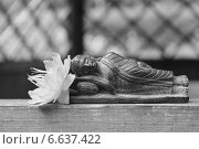 Купить «Черно-белый спящий Будда с цветком купальницы», эксклюзивное фото № 6637422, снято 16 июня 2014 г. (c) Ната Антонова / Фотобанк Лори