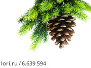 Christmas tree isolated on the white background. Стоковое фото, фотограф Elnur / Фотобанк Лори