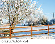 Купить «Зимний день за городом», фото № 6654754, снято 8 декабря 2010 г. (c) Татьяна Кахилл / Фотобанк Лори