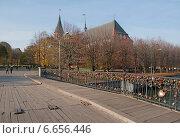Купить «Мост,ведущий к Кафедральному собору. Калининград», эксклюзивное фото № 6656446, снято 4 ноября 2014 г. (c) Svet / Фотобанк Лори