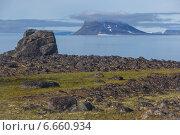 Купить «Скалистый берег Земли Франца-Иосифа», фото № 6660934, снято 5 августа 2013 г. (c) Николай Гернет / Фотобанк Лори