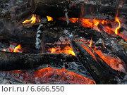 Горящий костер. Стоковое фото, фотограф Юлия Куксова / Фотобанк Лори
