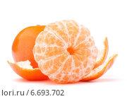 Купить «Peeled tangerine or mandarin fruit», фото № 6693702, снято 10 января 2013 г. (c) Natalja Stotika / Фотобанк Лори