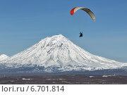 Купить «Полет на параплане на фоне Корякского вулкана. Камчатка», фото № 6701814, снято 21 ноября 2014 г. (c) А. А. Пирагис / Фотобанк Лори